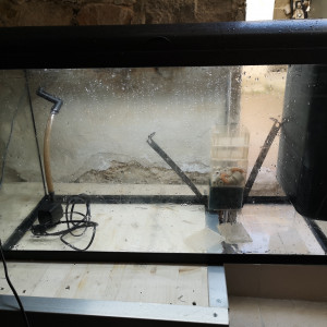 Vend aquarium 100 litre aquatlantis
