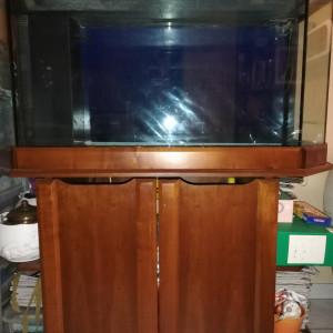 Vends aquarium 360 litres- encastrement merisier