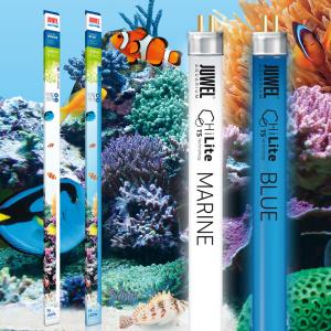 Lot Tubes fluorescents HiLite T5 pour aquarium d'eau de mer - MARINE et BLUE - JUWEL
