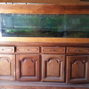 Aquarium 800 litres à Ceyrat