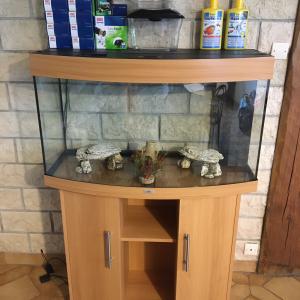 Vends aquarium Juwel Vision 180 litres avec son meuble et tous ses accessoires
