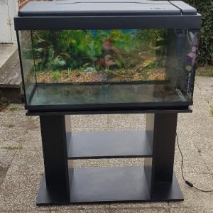 Aquarium 240L équipé + meuble