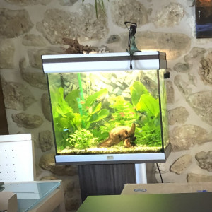 Vends Aquarium Aquatlantis 90 litres complet