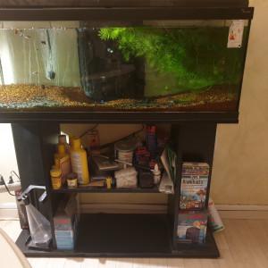 Aquarium complet avec meuble intégré