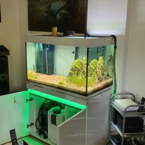 Aquarium premium complet