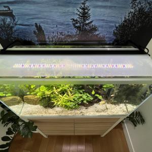 Aquarium complet avec meuble de 130 litres
