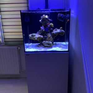 Aquarium red sea serie Max E-170