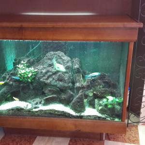 Bel aquarium bar de salon sur pied de 450 litres