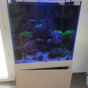 Aquarium cubique