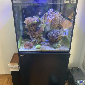 Vends : Red Sea Reefer MAX E 170 + Kit Decante et vivant