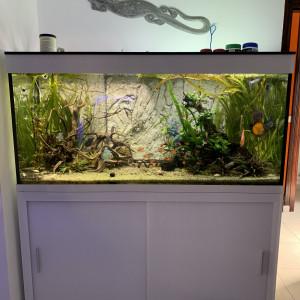 Aquarium complet ou detail