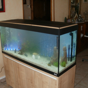 Vends aquarium 240 litres sur meuble