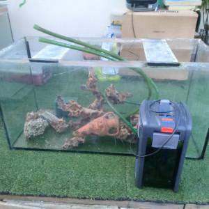 Aquarium 360 litres avec pompe , mangrove et divers décos