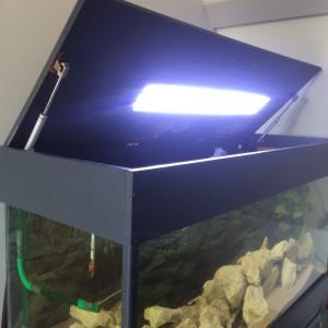 Aquarium 240L + meuble