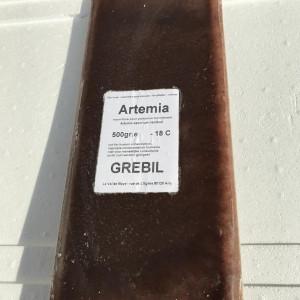 Artémias congelés (500g)