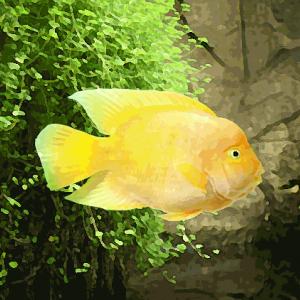 Perroquet jaune (environ 8 cm)