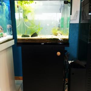 Aquarium Ciano Complet Garantie (acheté en décembre 2019)