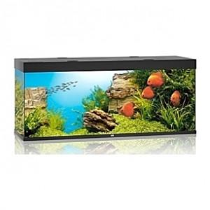 Aquarium JUWEL Rio (Noir) - 450l