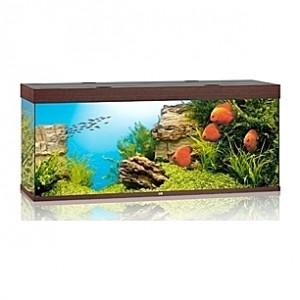Aquarium JUWEL Rio (Brun) - 450l