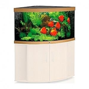 Aquarium JUWEL Trigon (Chêne clair) - 350l