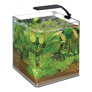 Aquarium Amtra/Wave Box Cubo ORION 25 - 16,5L