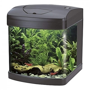 Aquarium Amtra/Wave XCUBE (Noir) - 26L