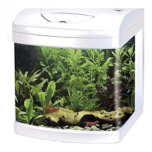 Aquarium Amtra/Wave XCUBE (Blanc) - 26L