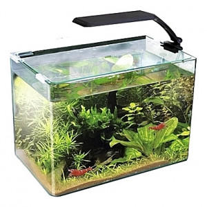 Aquarium Amtra/Wave Box 30 ORION - 11L