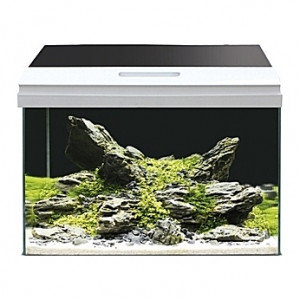 Aquarium Amtra/Wave Modern Tank - 40L
