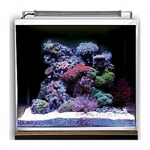 Aquarium Dupla Nano Ocean Cube - 50L