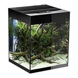 Aquarium AQUAEL Glossy Cube (Noir) - 135L
