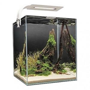 Aquarium AQUAEL SHRIMPSET (Blanc) - 10L