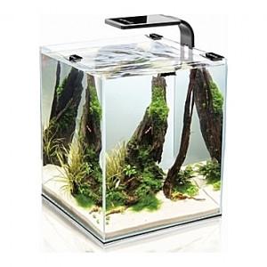 Aquarium AQUAEL SHRIMPSET (Noir) - 19L