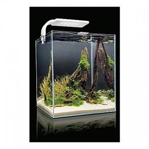 Aquarium AQUAEL SHRIMPSET (Blanc) - 19L