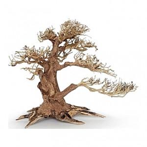 Racine arbre bonsaï 23x10x17 cm