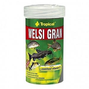 Granulés aliments de base pour poissons de fonds WELSI GRAN 100ml