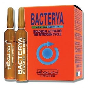 Activateur biologique du cycle de l'azote Equo BACTERYA - 6 ampoules 5ml