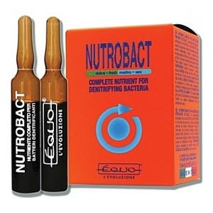 Nutriments complets pour bactéries Equo NUTROBACT - 6 ampoules 5ml