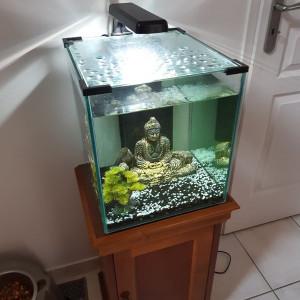 Aquarium NANO CUBE 40L