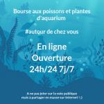 bourse en ligne, boutique aquariophilie