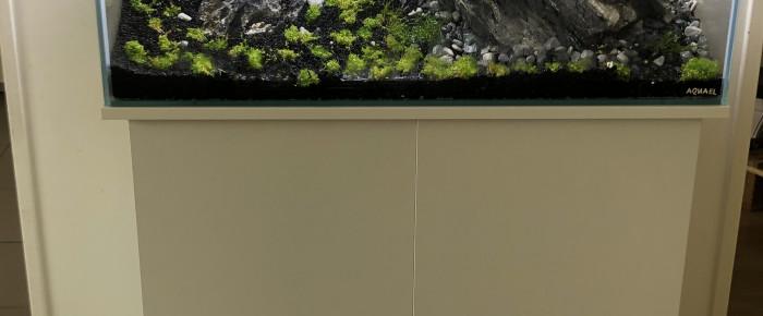 aquarium Cuve nue 120L , de Lottomans