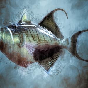Pathologies des poissons d'ornement